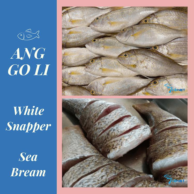 Sea bream, ang go li, white snapper fish
