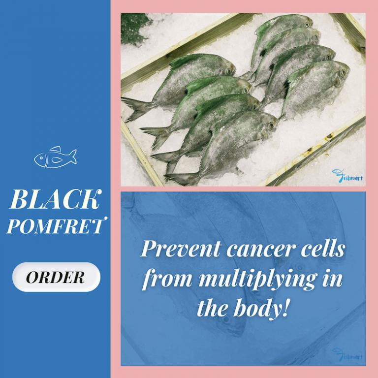 what is black pomfret fish
