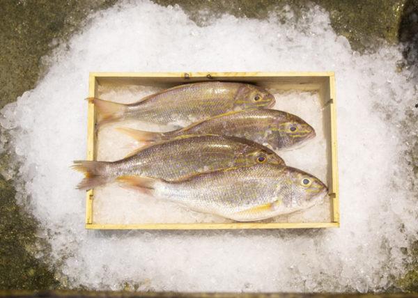 ang go li fish curry