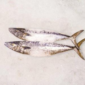 Buy Batang fish in Singapore
