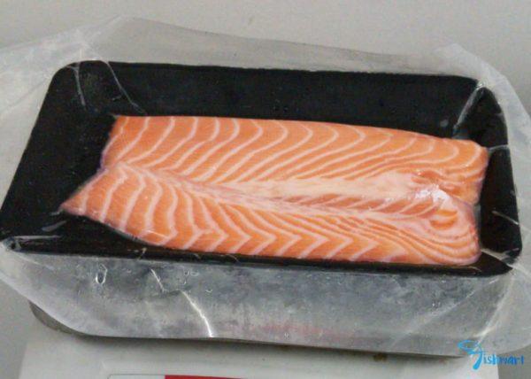 Buy salmon belly in Singapore