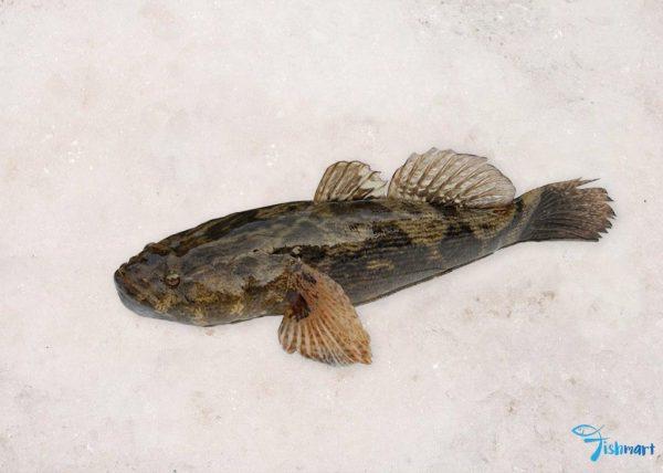 soon hock fish