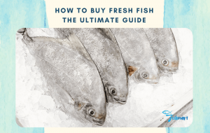 guide to how to buy fresh fish